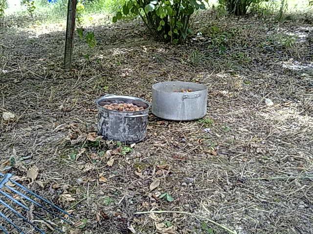 http://www.energialternativa.info/public/newforum/ForumEA/M/050820165342.jpg