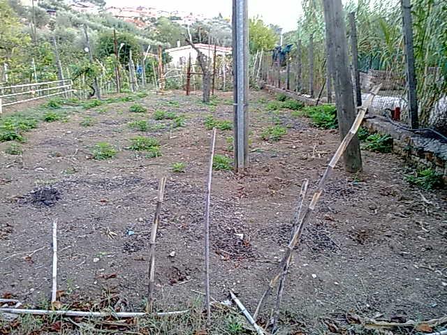 http://www.energialternativa.info/public/newforum/ForumEA/M/140920165739.jpg